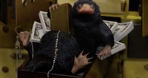 Niffleur les animaux fantastiques niffler in fantastic beasts and where to find them